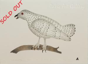 'Arctic Bird of Prey' by Geela Maniapik