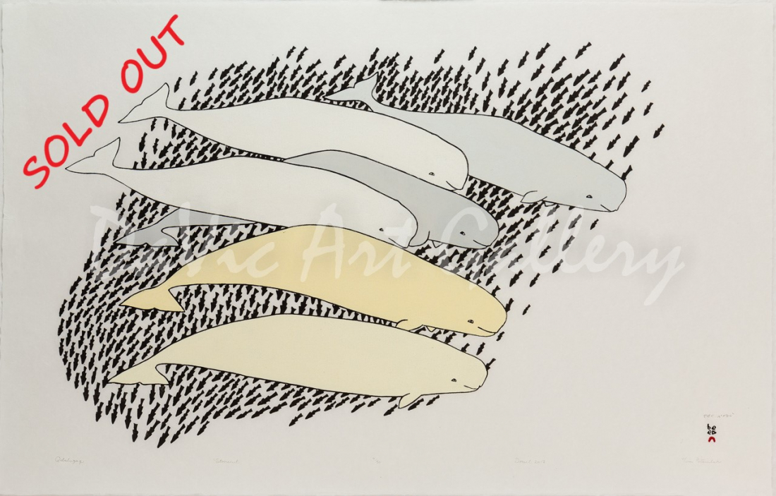 'Qilalugaq (Beluga)' by Tim Pitsiulak