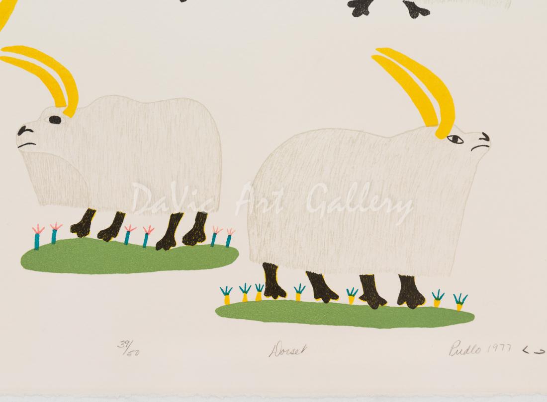 'Umingmuk' by Pudlo Pudlat - Cape Dorset 1977
