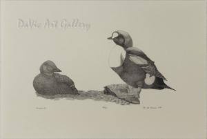 'Kingaliks' by Peter Palvik - Inuit Art - Ulukhaktok (Holman) 1997