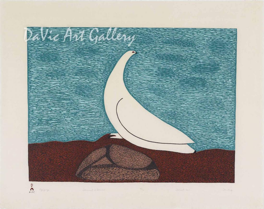 """Aqigirq (Rock Ptarmigan)"" by Ohotaq Mikkigak - Inuit - Cape Dorset 2011"