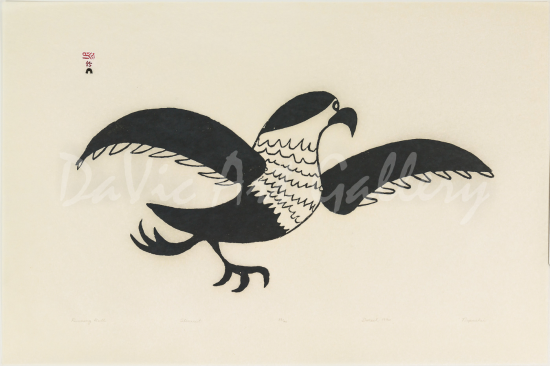 """Running Gull"" by Napachie Pootoogook"