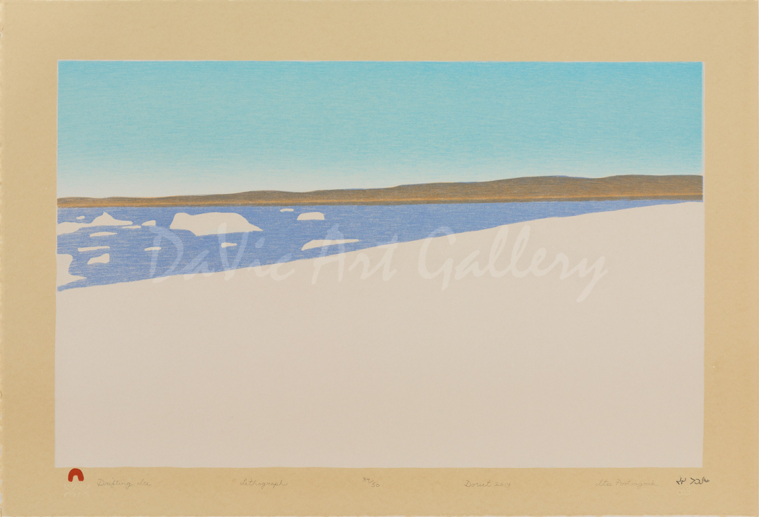 'Drifting Ice' by by Itee Pootoogook - Inuit Art - Cape Dorset 2014