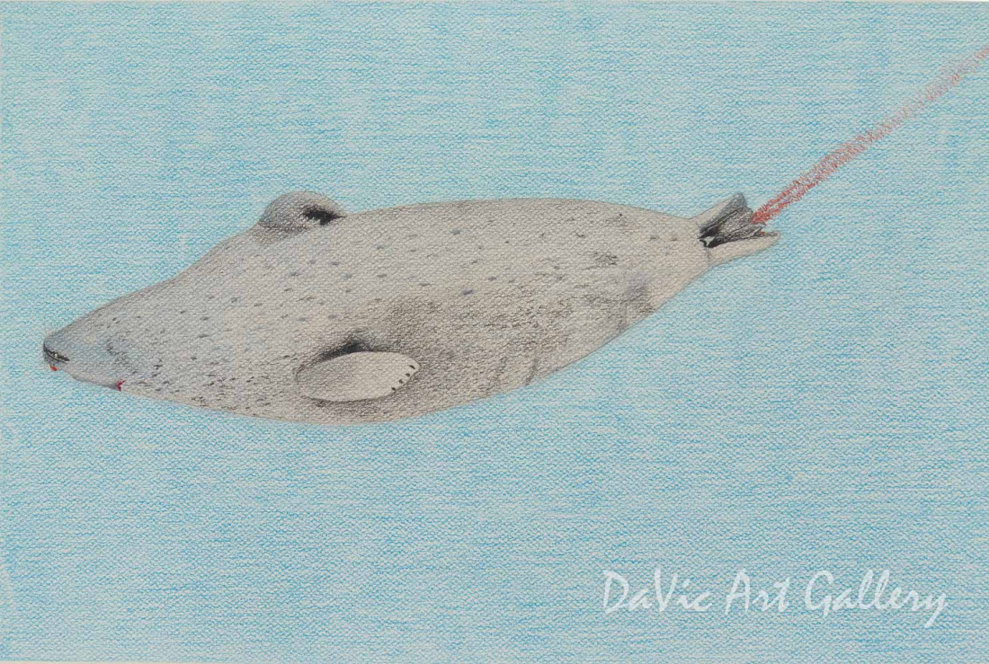 'Ringed Seal Freshly Killed' by Itee Pootoogook - Cape Dorset original Inuit Art drawing