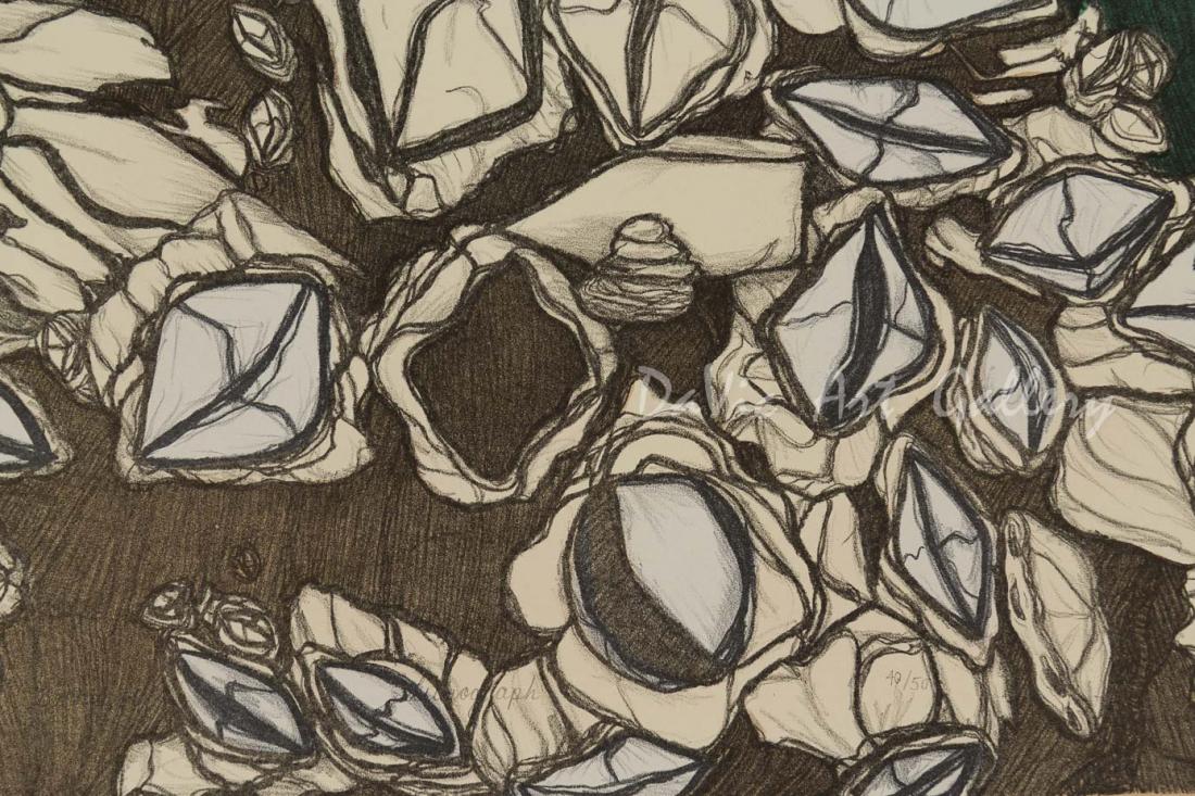 'Barnacles' by Padloo Samayualie - Cape Dorset 2018