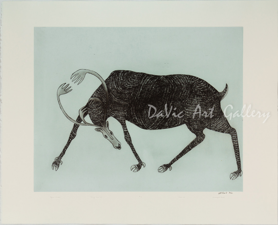 'Defiant Caribou' by Quvianaqtuk Pudlat - Cape Dorset 2018