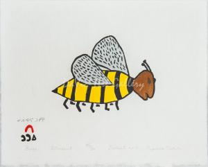 'Buzz' by Papiara Tukiki