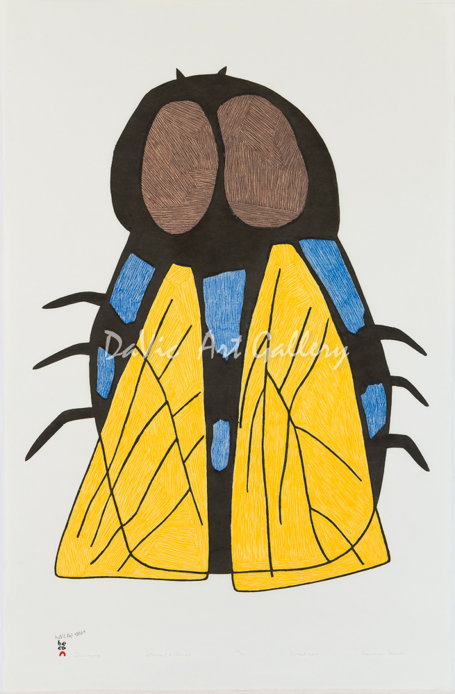 'Qaumajaq (Fly)' by Saimaiyu Akesuk