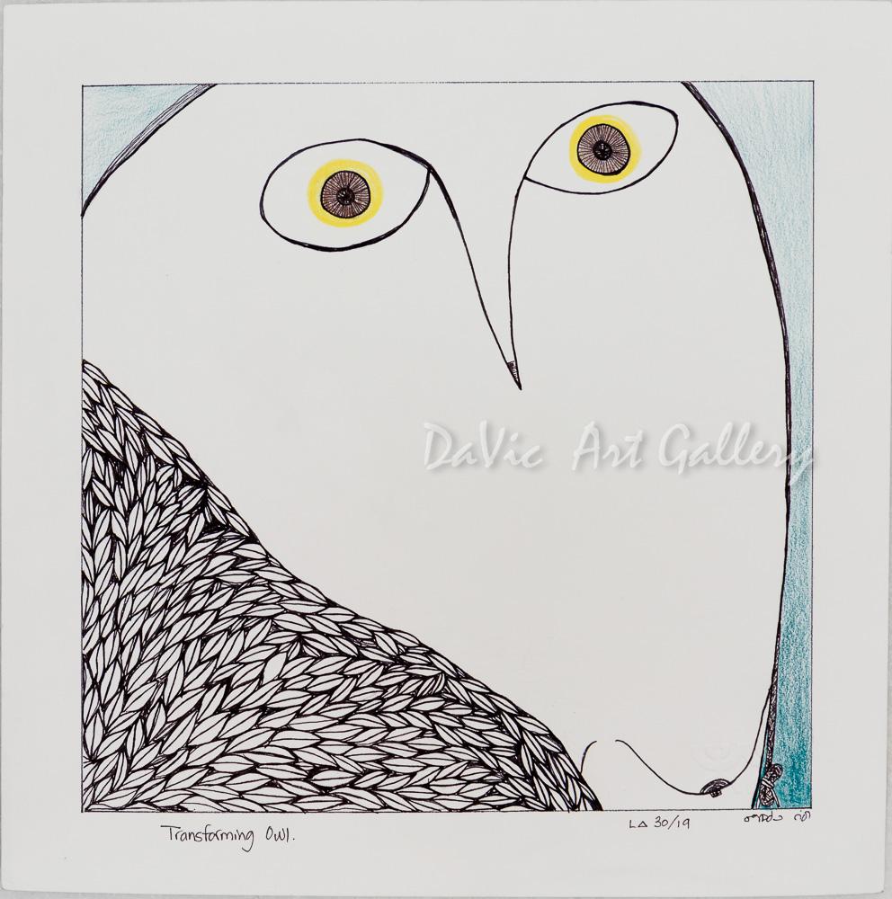 'Transforming Owl' by Ningeokuluk Teevee
