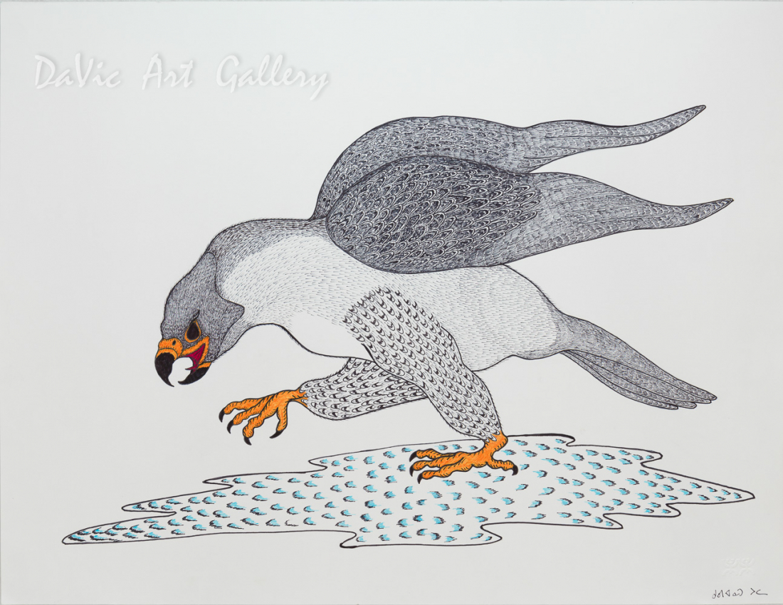 Untitled 'Gyrfalcon' by Quvianaqtuk Pudlat